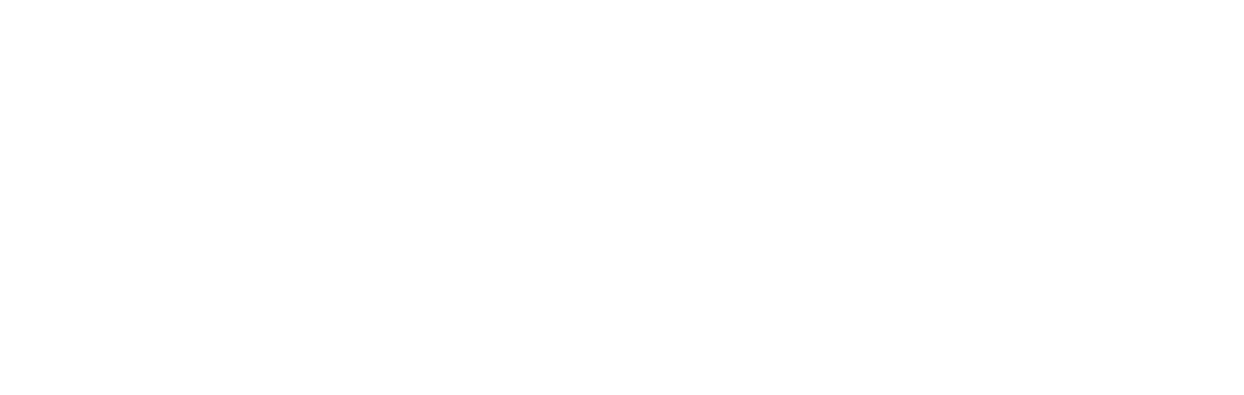 Archive logo 2008